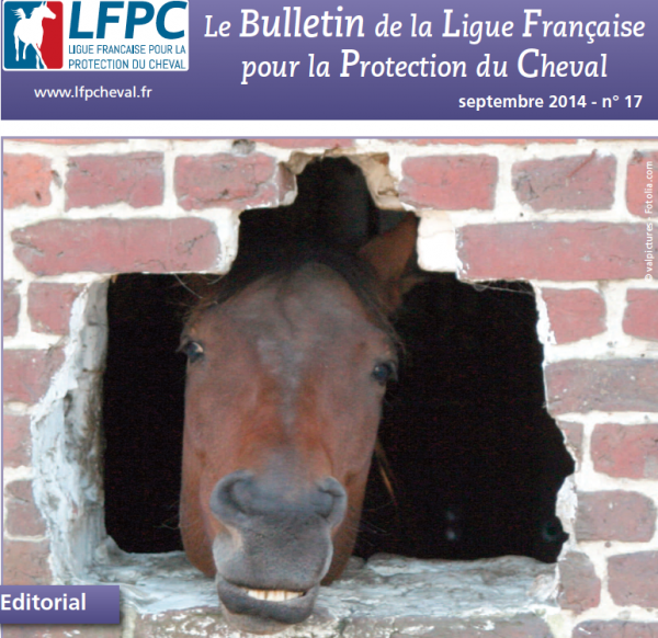 Capture d'écran 2014 09 14 à 11.42.42 600x582 Bulletin dactivités de la LFPC n°17