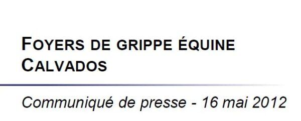 Foyer grippe equine calvados 600x243 Foyer de grippe Equine dans le Calvados